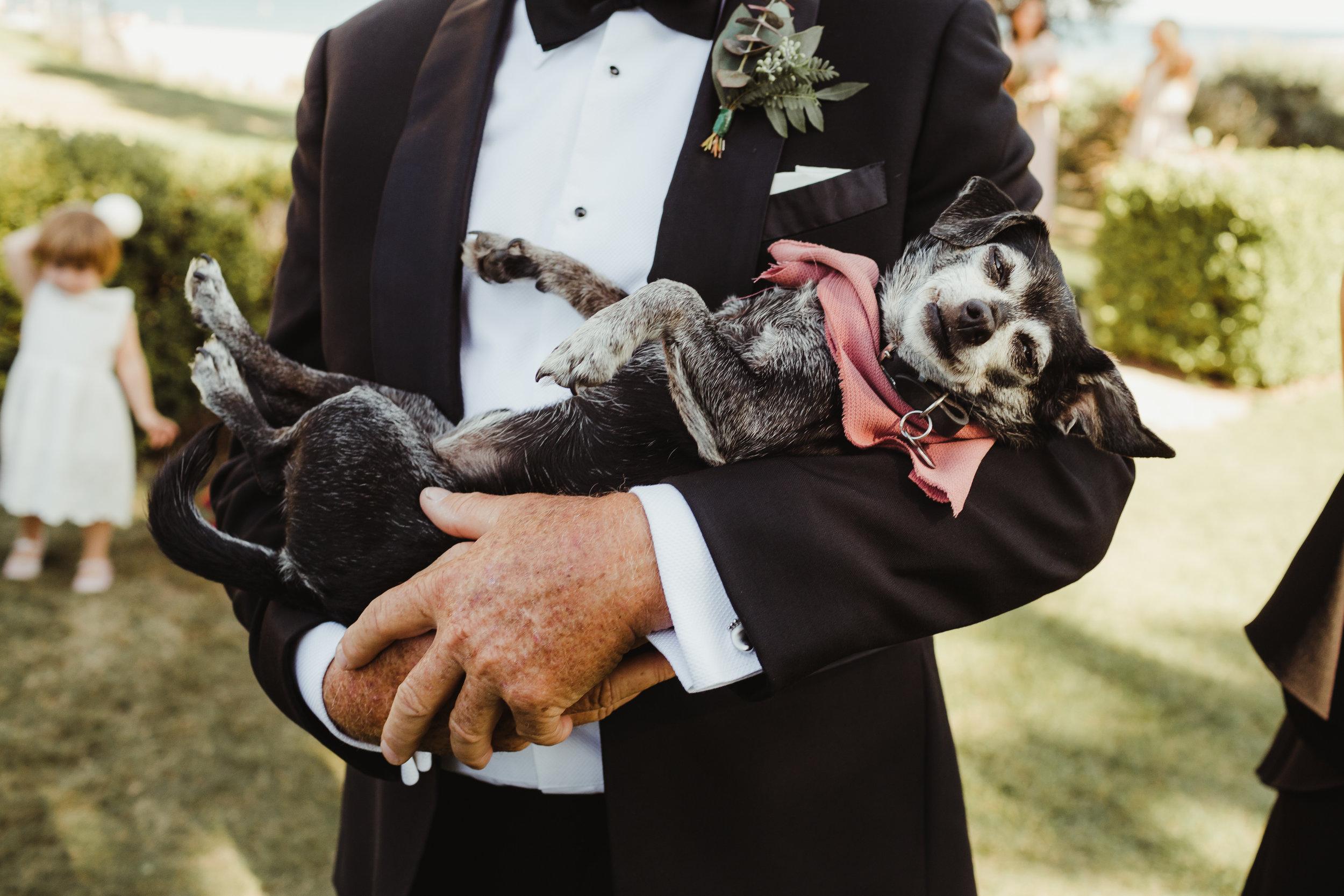 Adamson House Wedding in Malibu, California. Photography by Hannah Costello