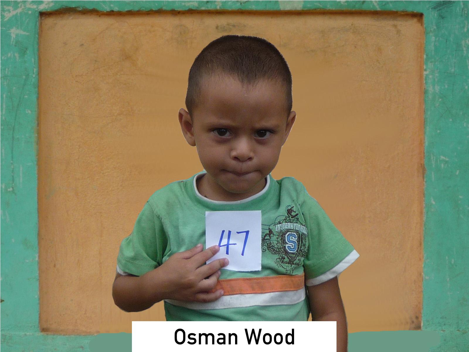 047 - Osman Wood.jpg