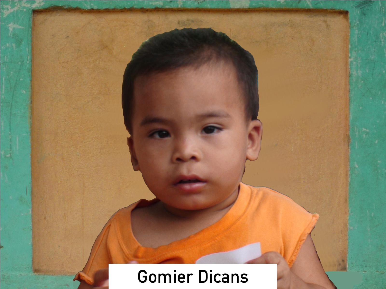 079 - Gomier Dicans.jpg