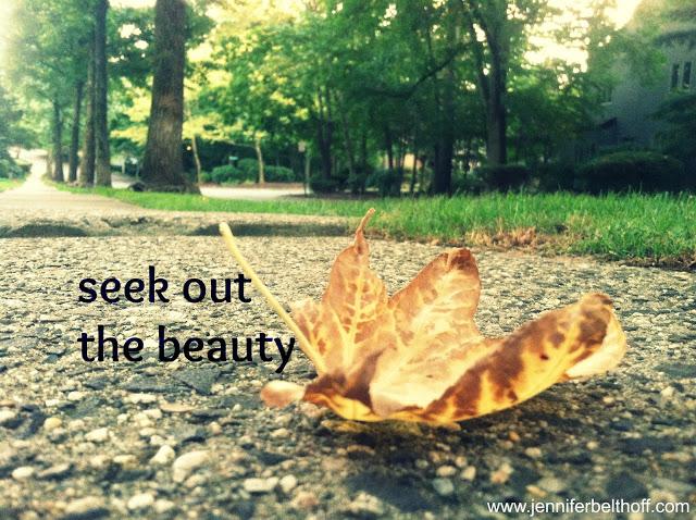 seek+beauty.jpg