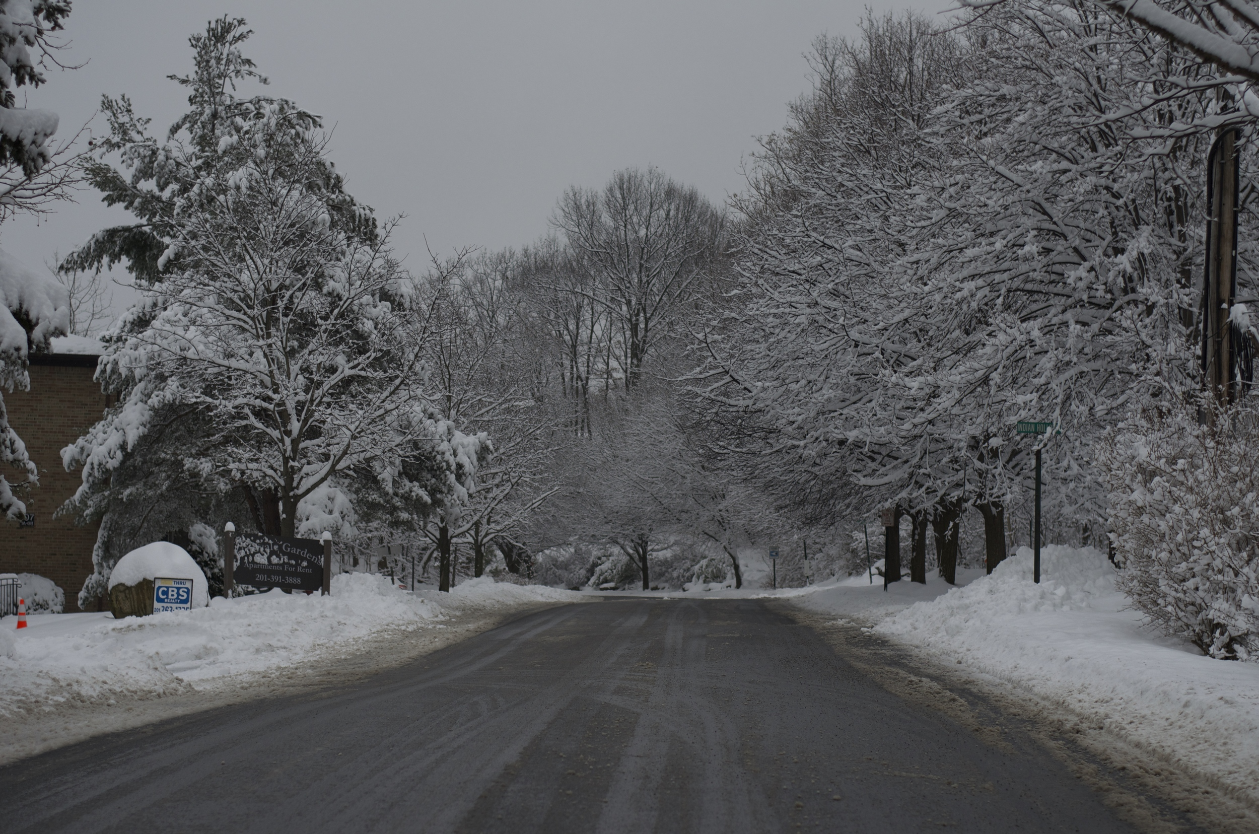 snow filled road