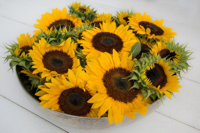 sunflower bowl.jpg