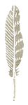Feather Tall.png