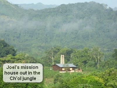 the house i built in the jungle.JPG