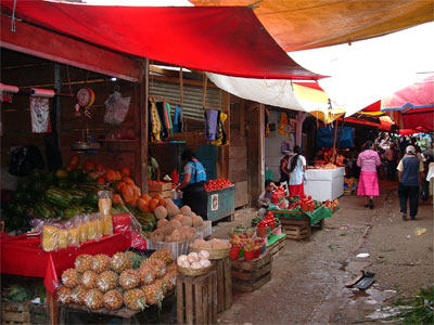 Food-Market.jpg