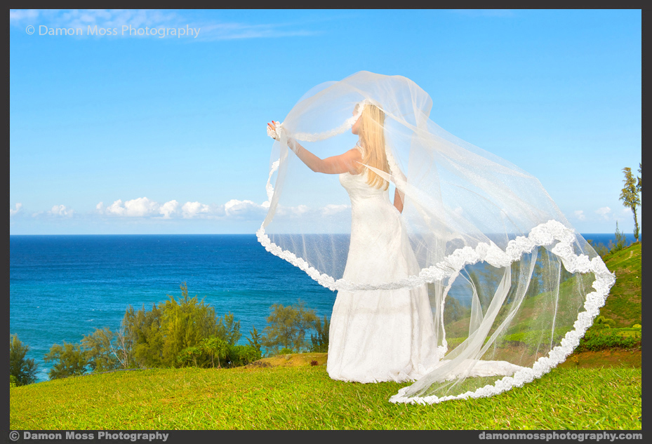 Kauai-Wedding-Photographer-24b-DM.jpg