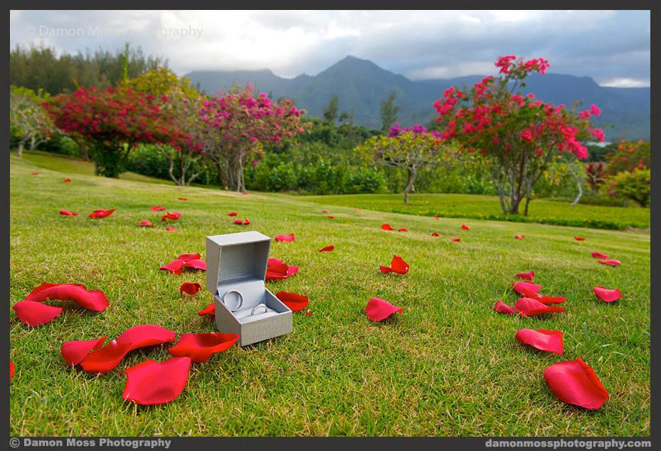 Kauai-Wedding-Photographer-5a-DM.jpg