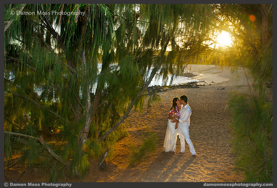 Kauai-Wedding-Photographer-17a-DM.jpg