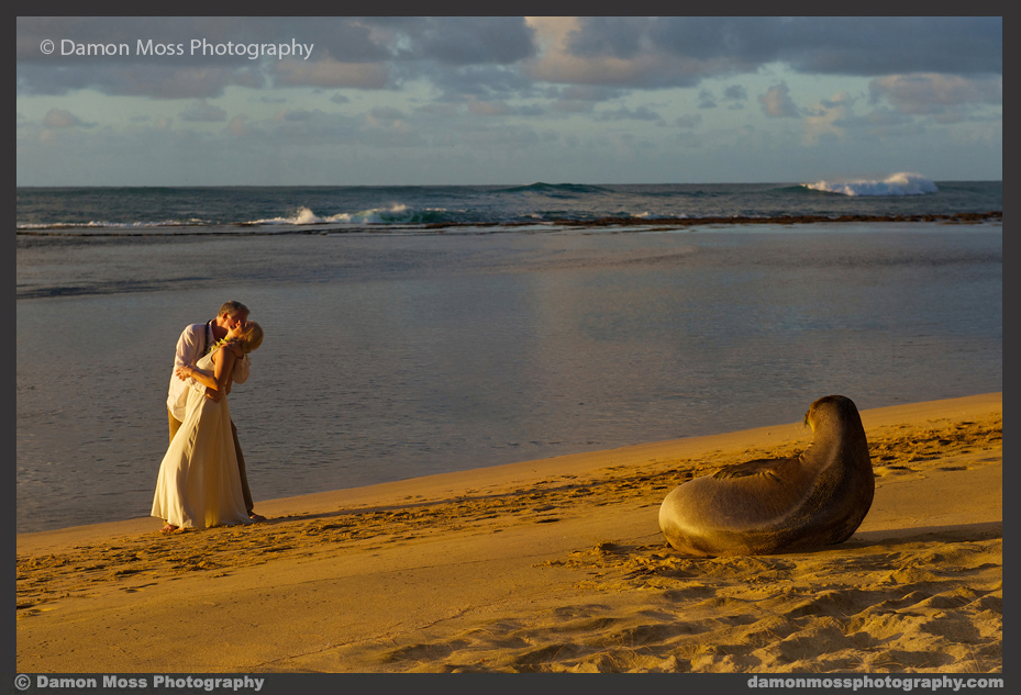 Kauai-Wedding-Photographer-14-DM.jpg