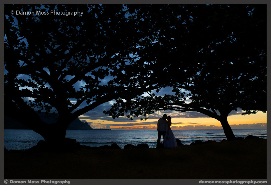 Kauai-Wedding-Photographer-21b-DM.jpg
