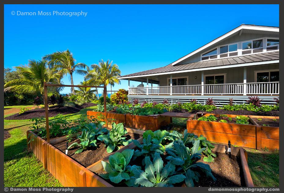 Hawaii-Architecture-Photographer-3d-DM.jpg