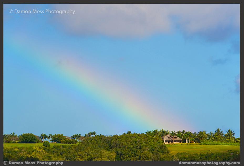Hawaii-Architecture-Photographer-7-DM.jpg