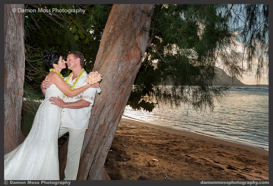 Damon_Moss_Kauai_Wedding_Photographer1_dm2.jpg