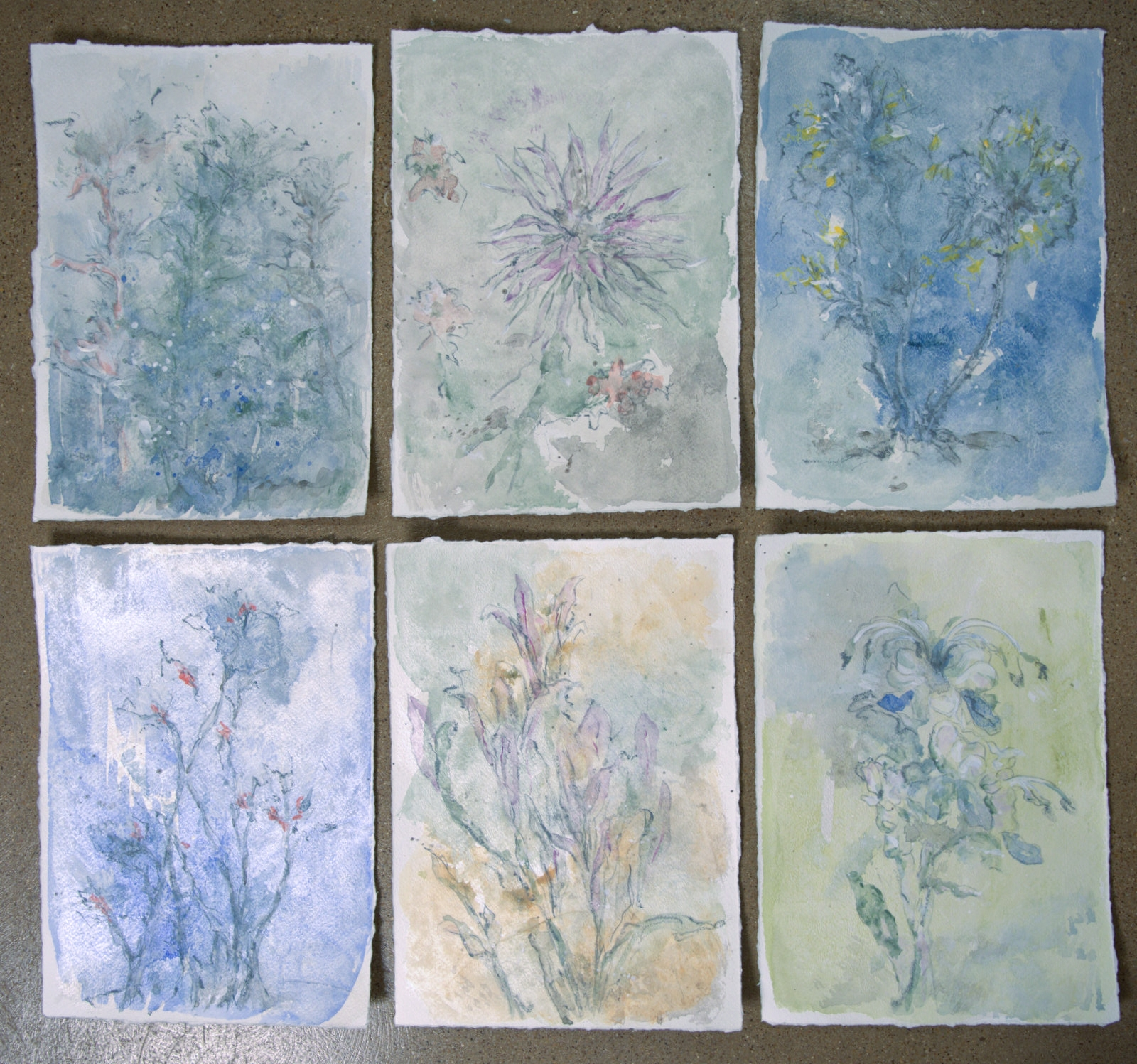 "Floral 1 through 6 - mixed medium on paper (ea.14""x10"")"