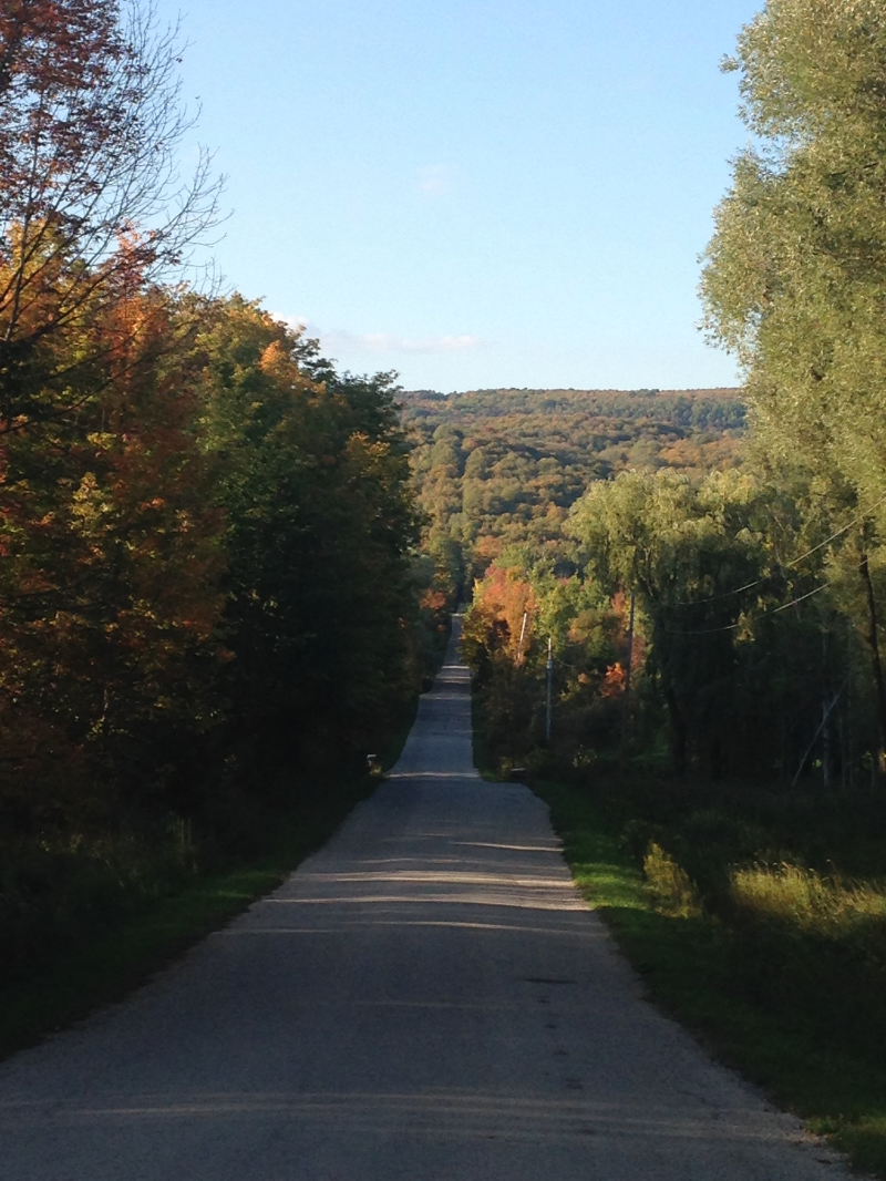 Looking north at the mid point of the Pretty River Valley Climb.