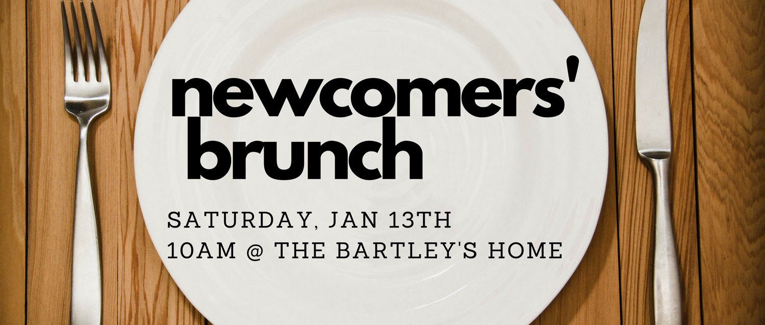 Newcomers' Brunch 1.13.17 Banner.jpg