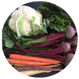 Kunya_Cirlces_veggies-300x300.png