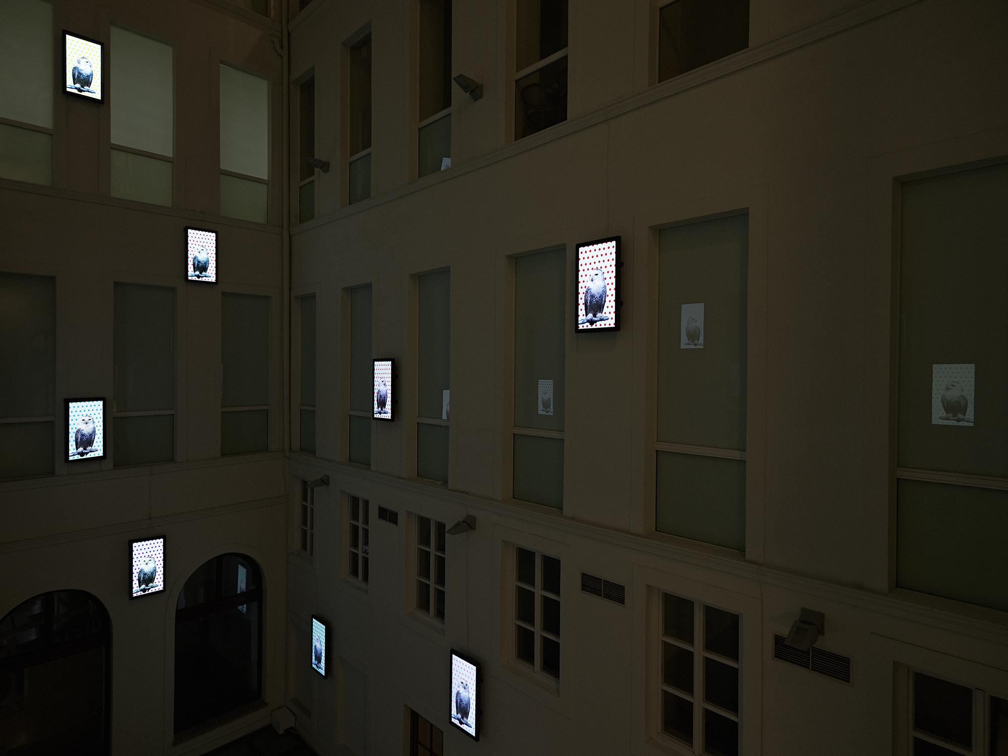 Robert_Willson_exhibition_12.jpg