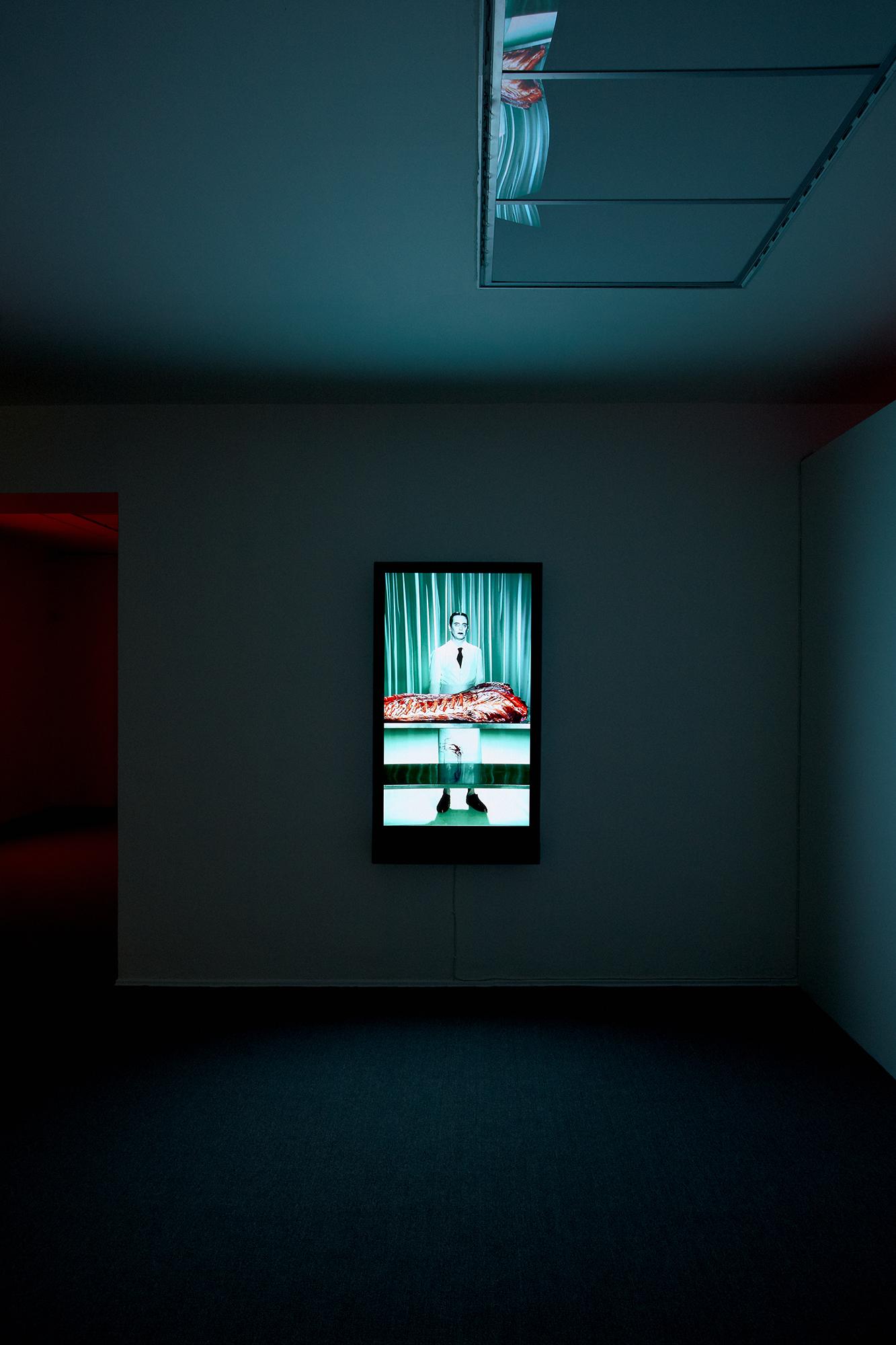 Robert_Willson_exhibition_17.jpg
