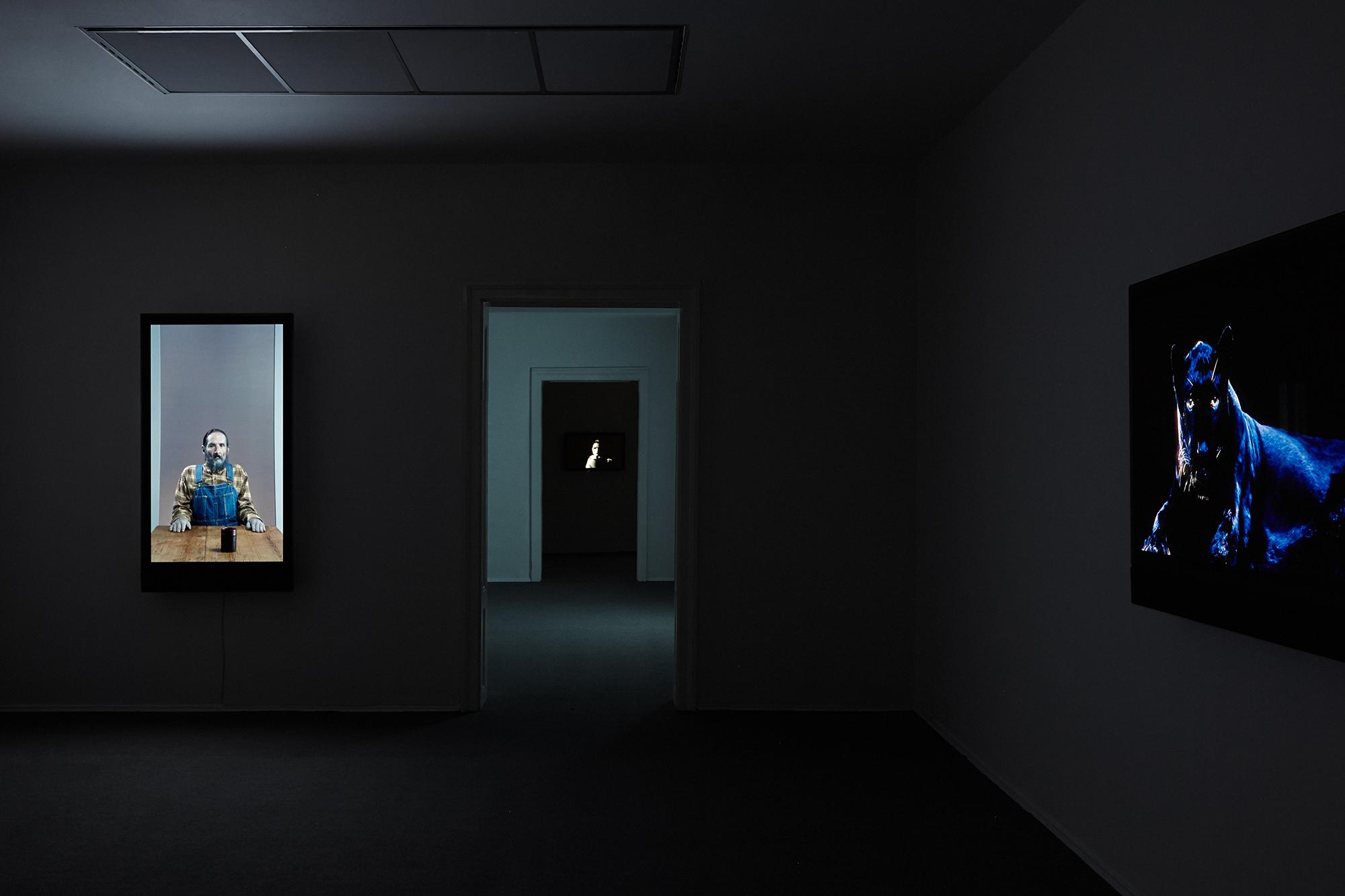 Robert_Willson_exhibition_23.jpg