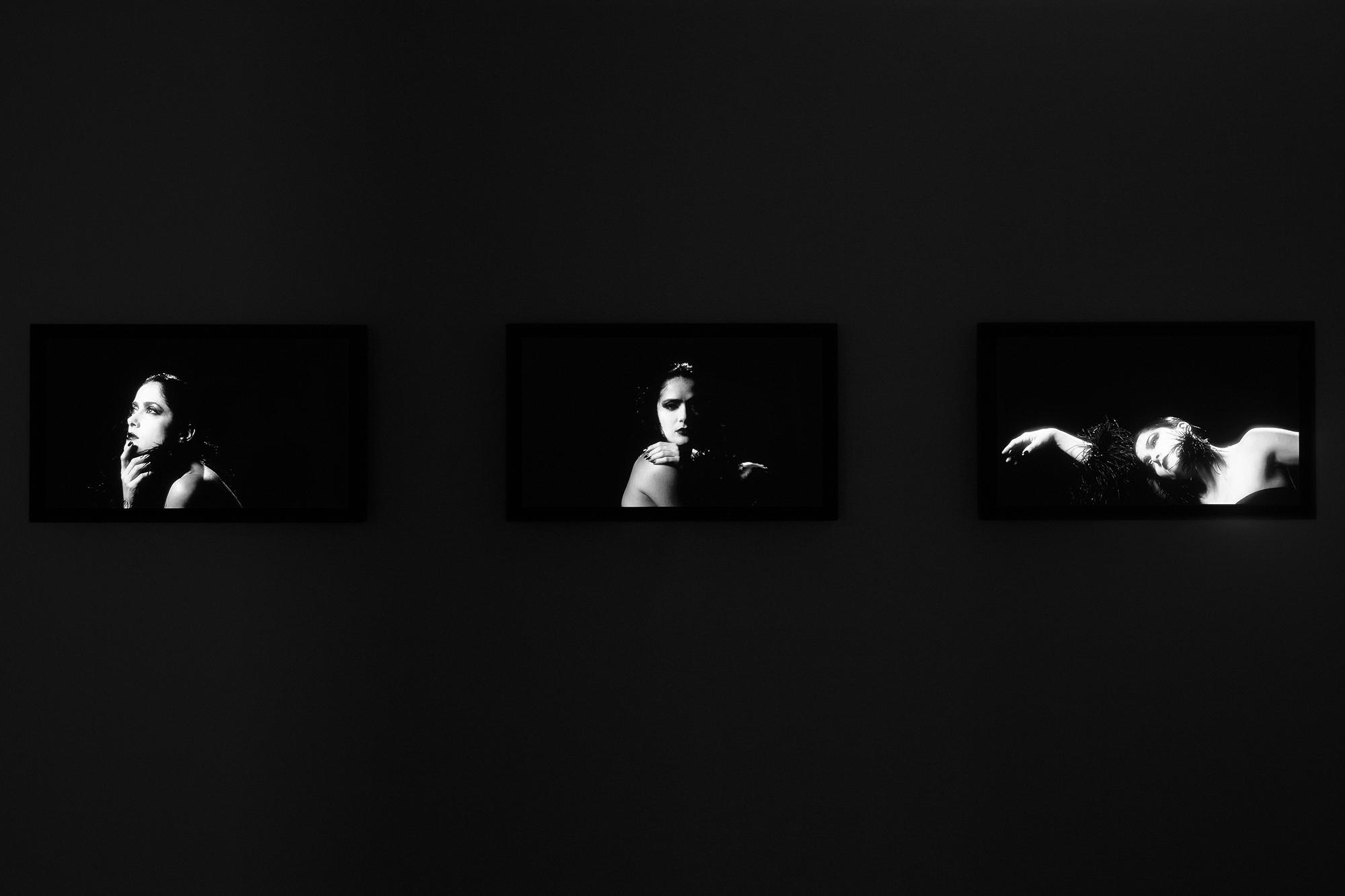 Robert_Willson_exhibition_25.jpg