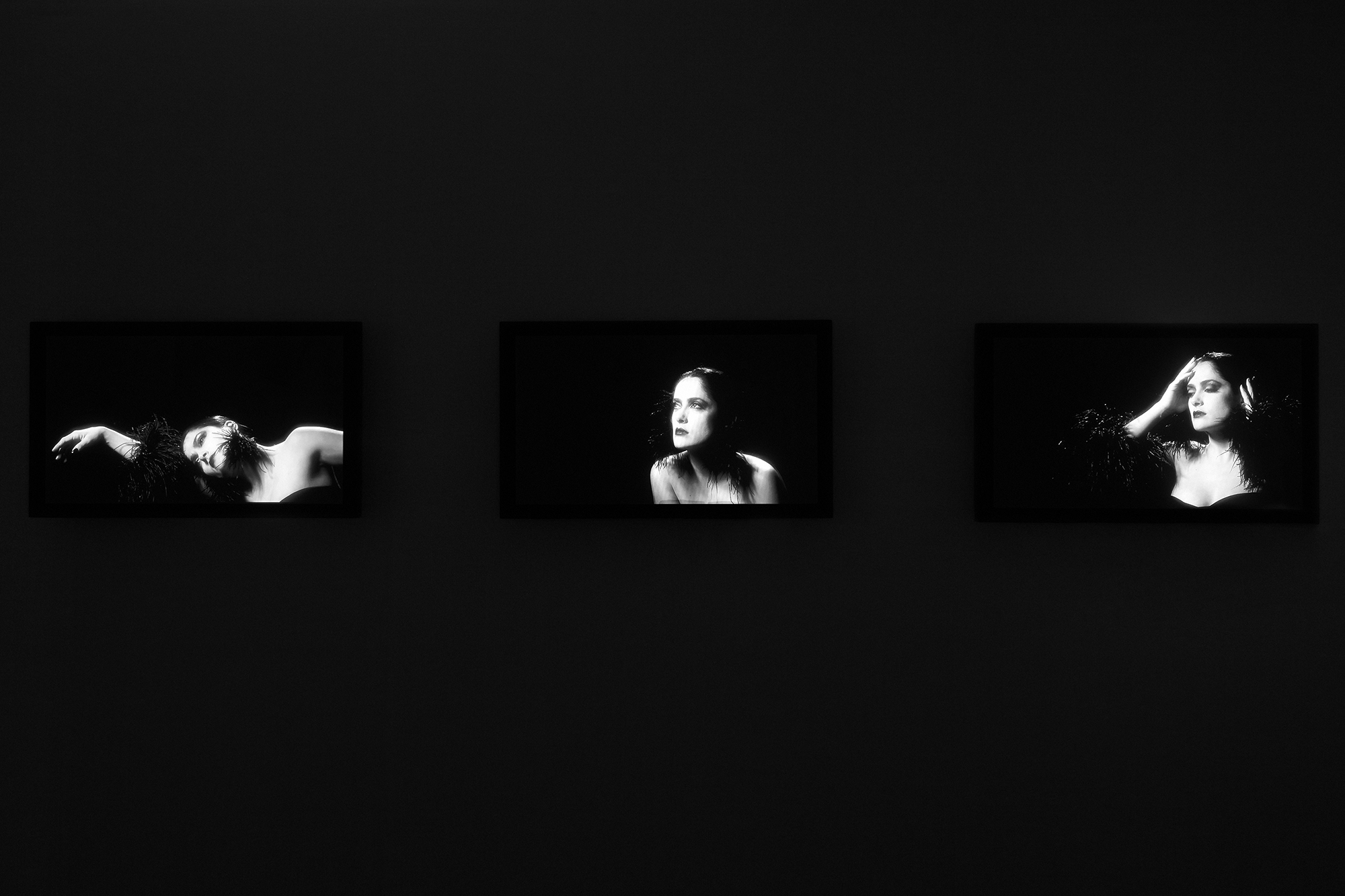 Robert_Willson_exhibition_26.jpg
