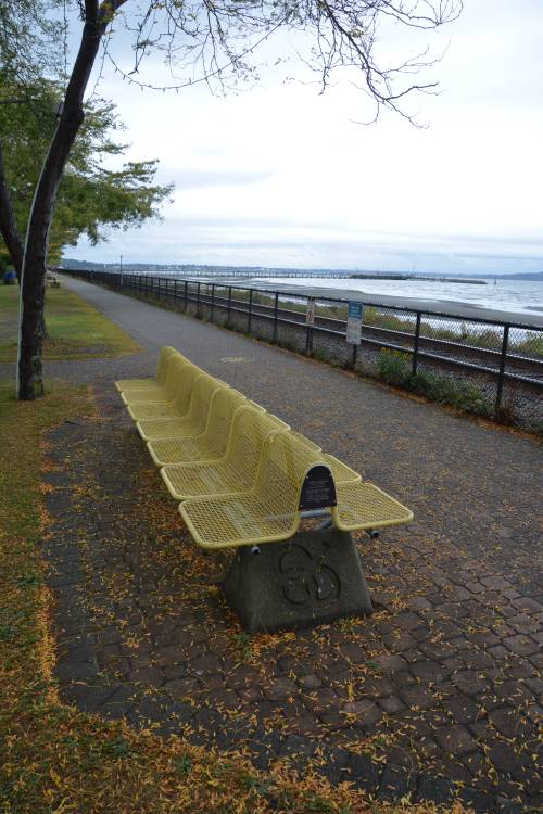 A bench at the beach in John's hometown of White Rock, BC