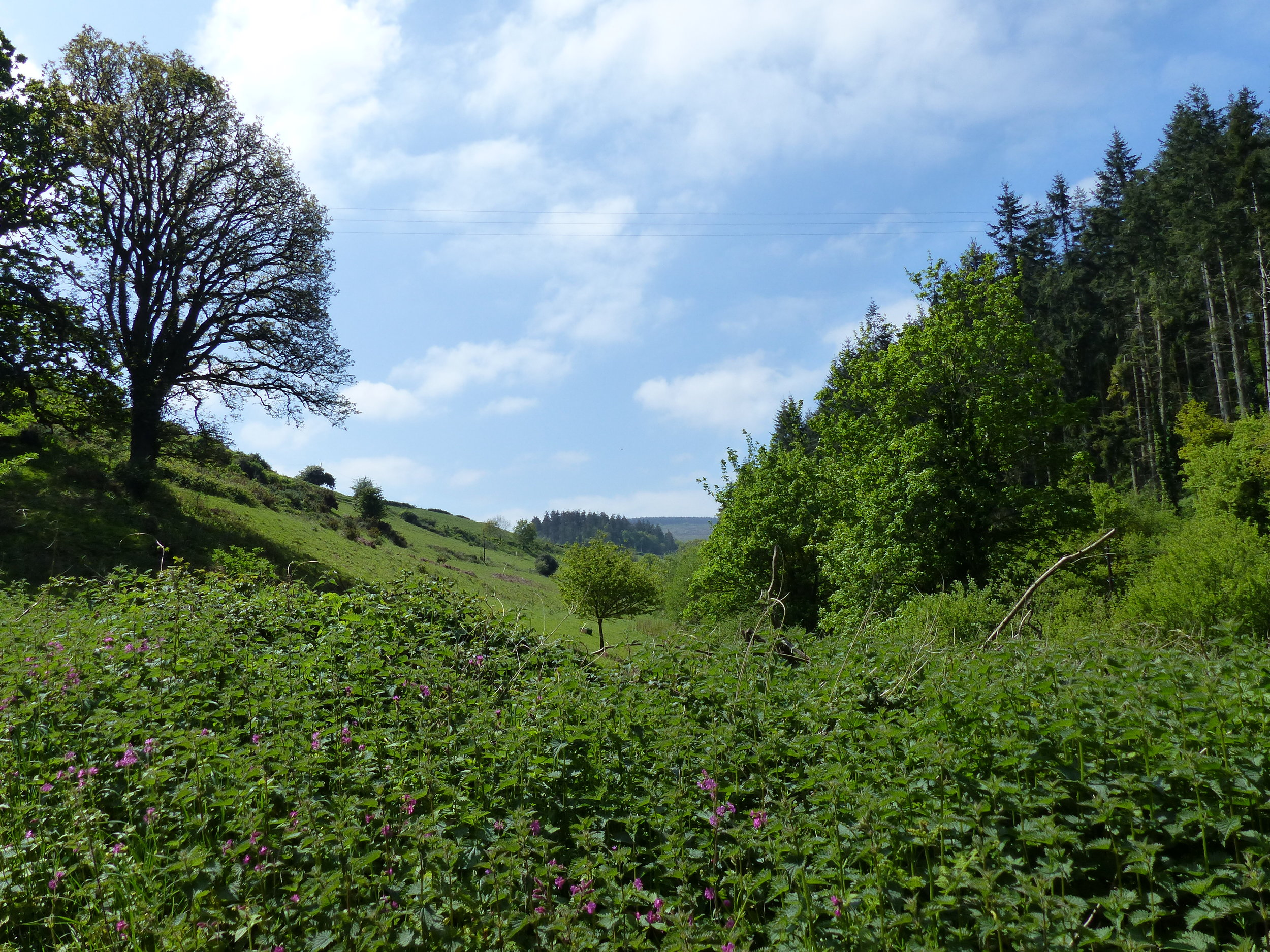 View from the site down the valley towards Black Hill