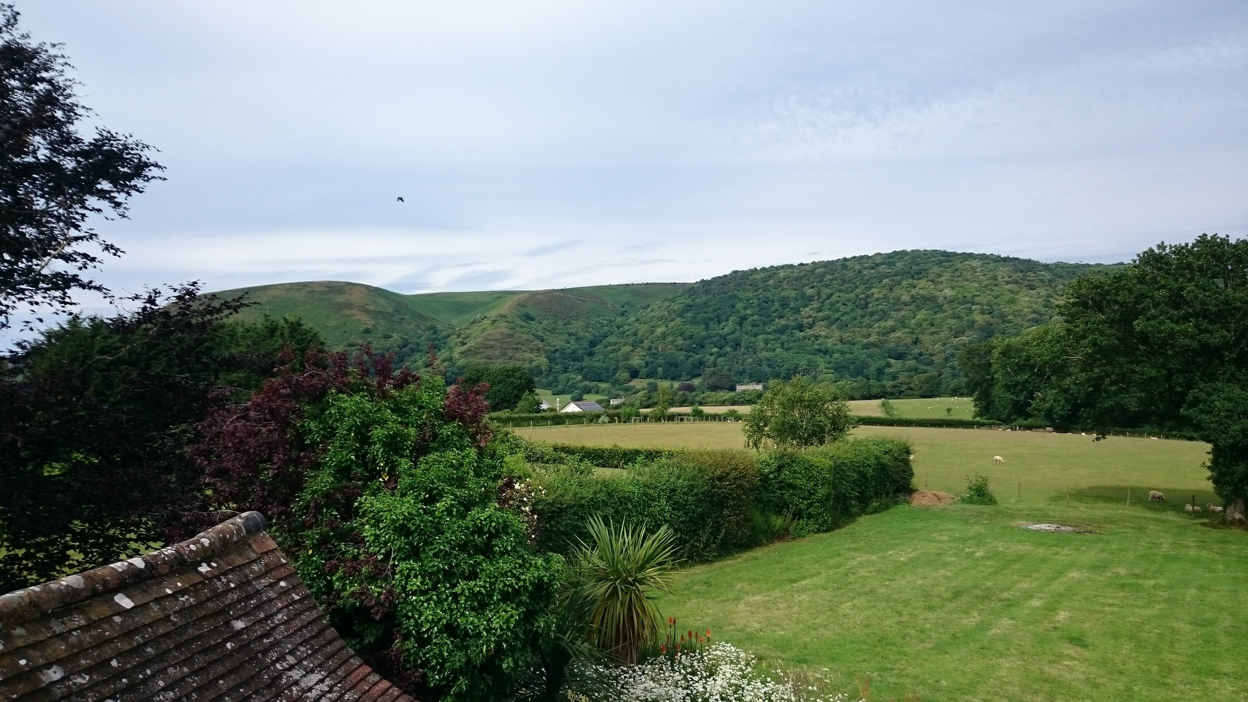 Panoramic views looking towards Bossington Hill