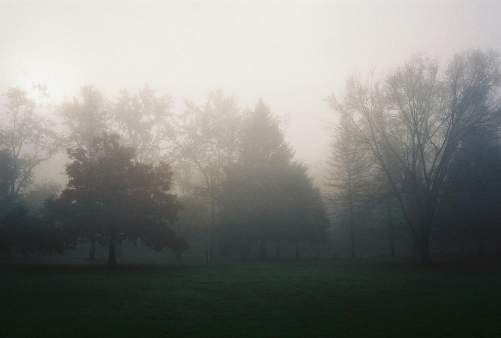 fog 3