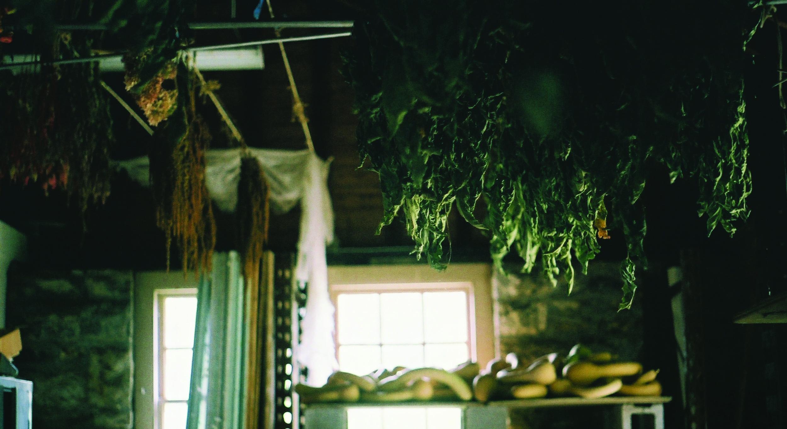 drying room - 1.jpg