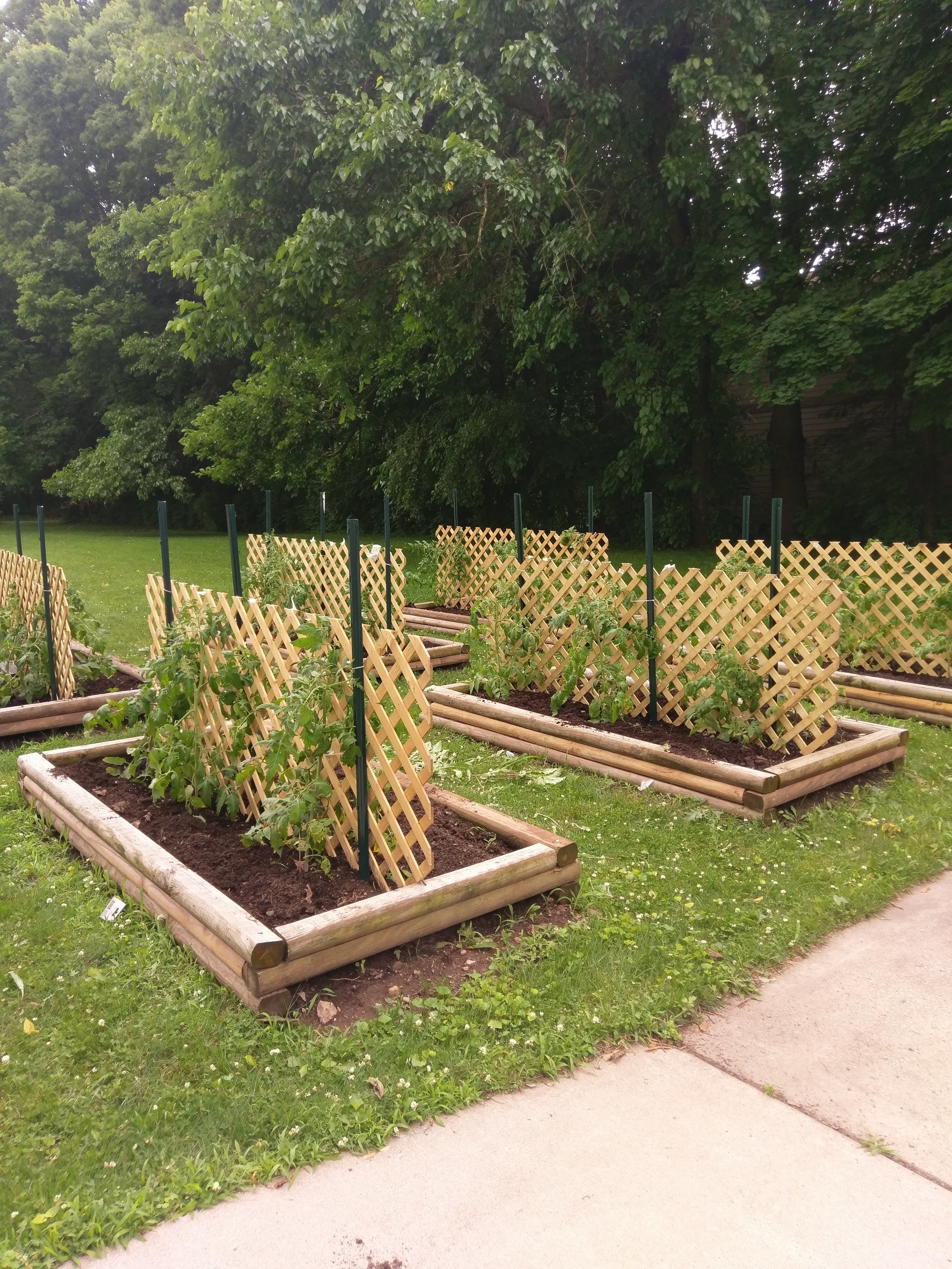Gabby's Garden at All Saints' Syracuse