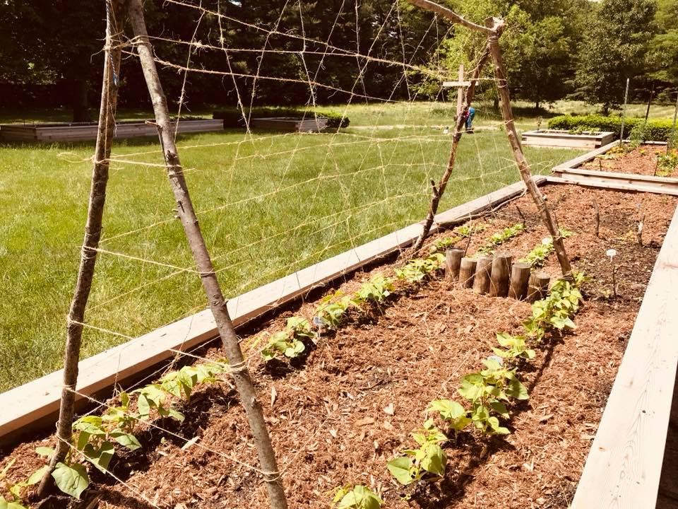Unity Garden at St. David's Elkhart