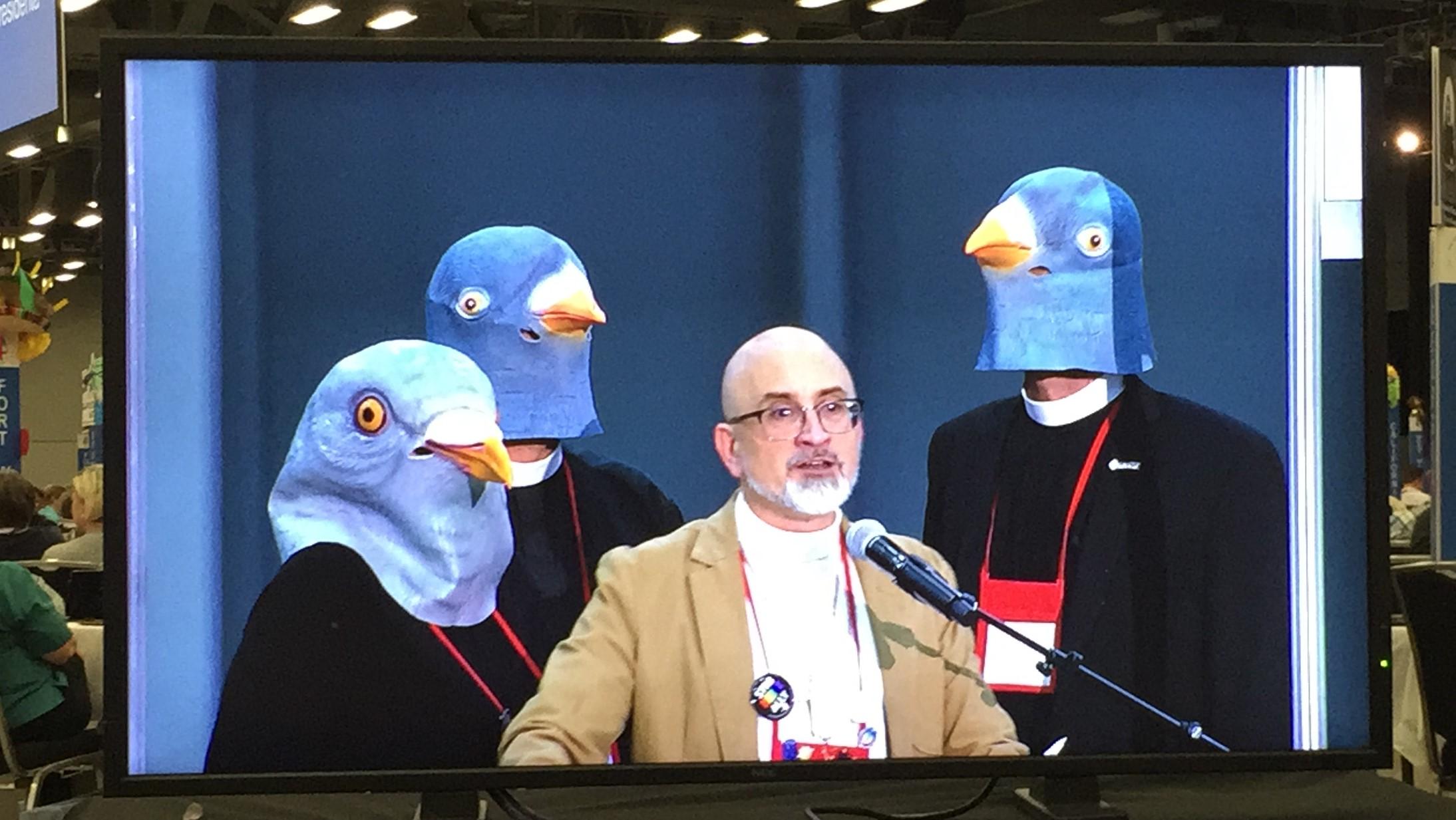 2018-07-13 Pigeon Fun.jpg