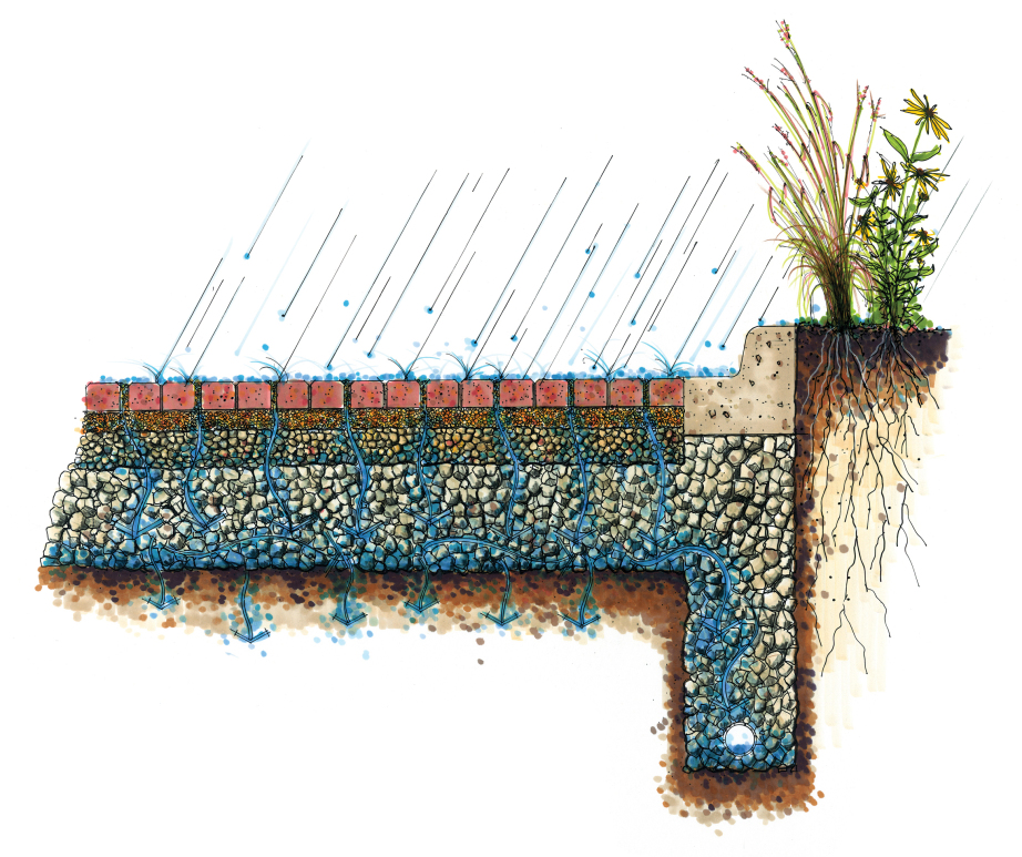 nrcs_permeable-paving-diagram.jpg