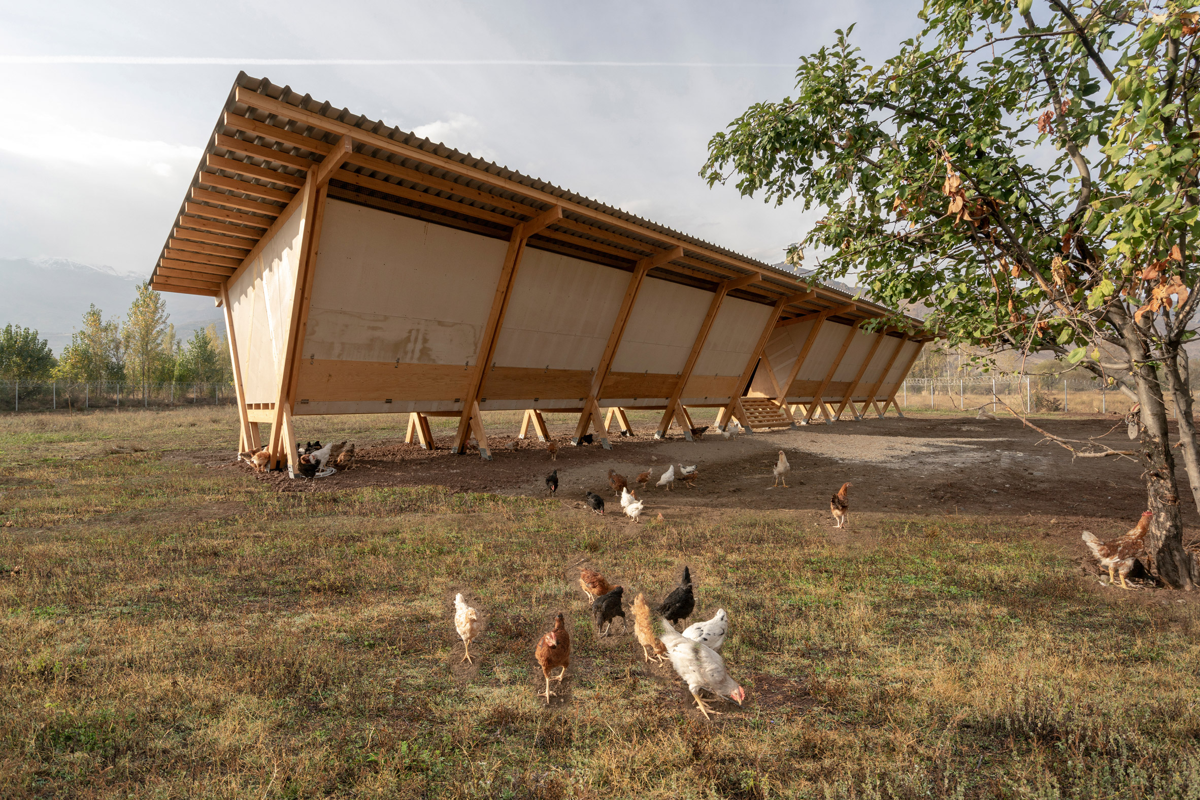 house-of-chickens-by-so-architecture-_dezeen_2364_col_3.jpg
