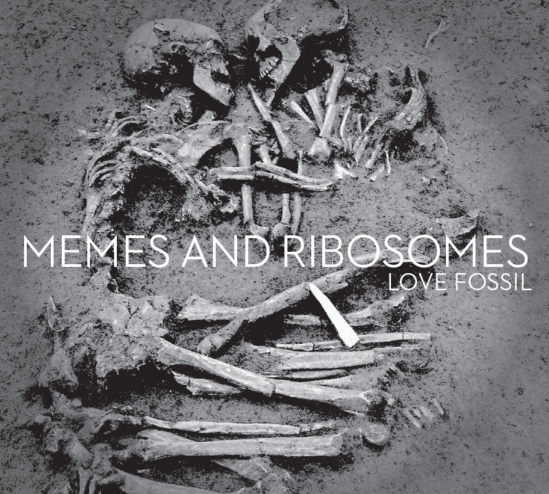 Memes and Ribosomes.png