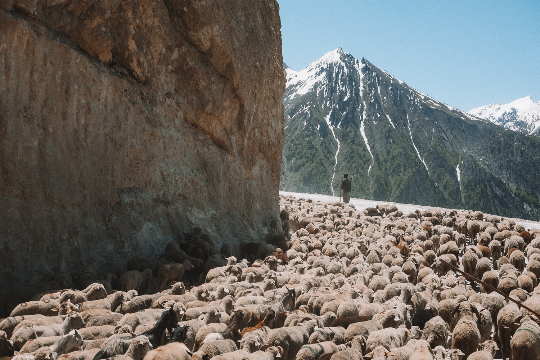 Ladakh_web-39.jpg