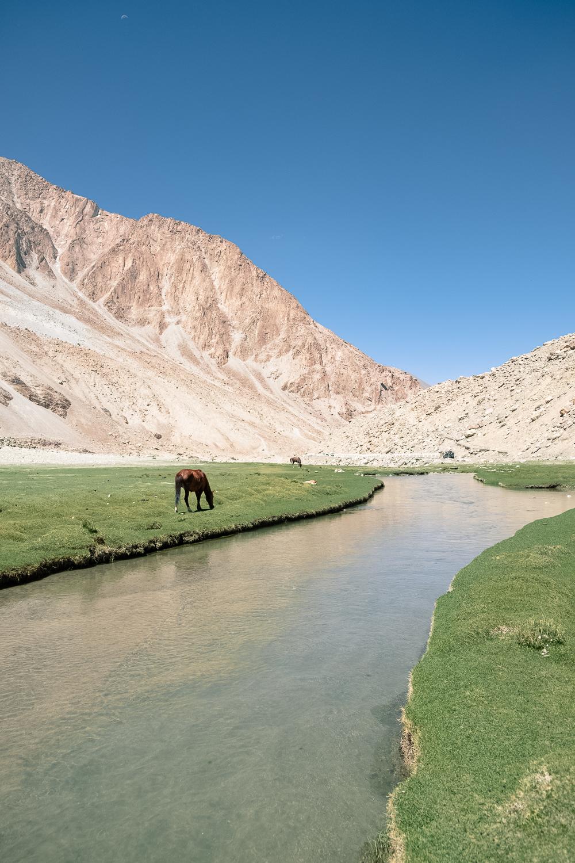 Ladakh_web-3.jpg