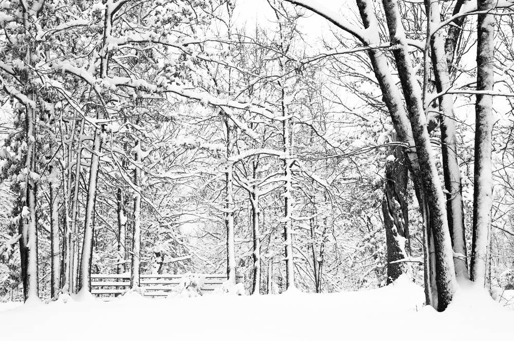 Ozark County Winter Wonderland