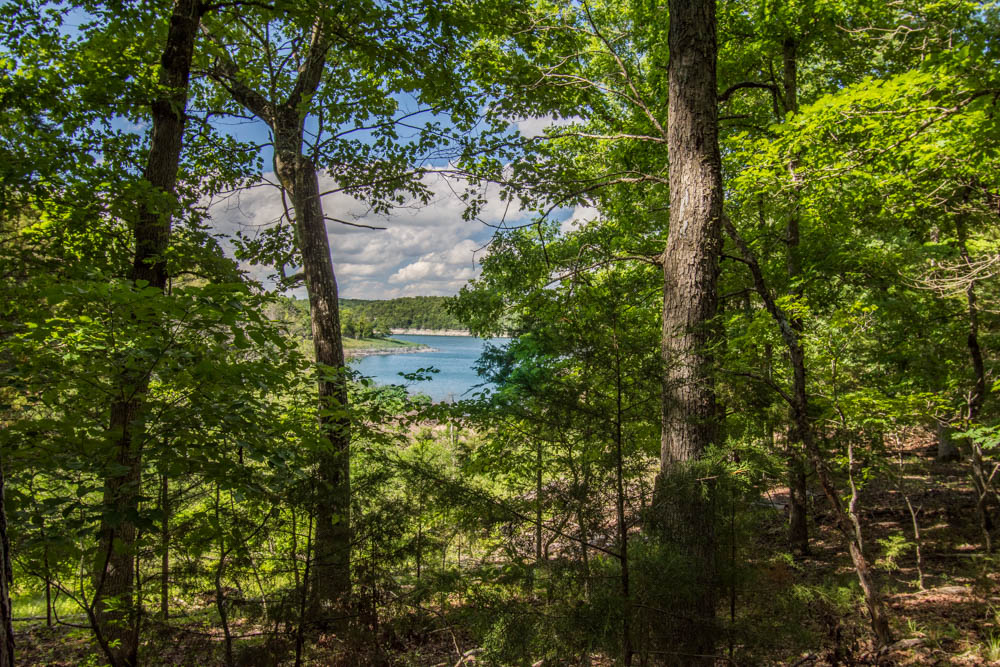 Bull Shoals Lake Theodosia MO 5 acres for sale