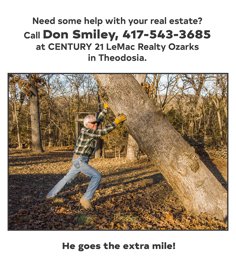 Don Smiley_real estate_bull shoals.jpg