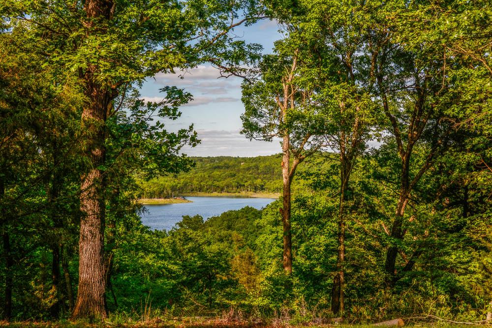 Bull Shoals Lake 11.74 acres