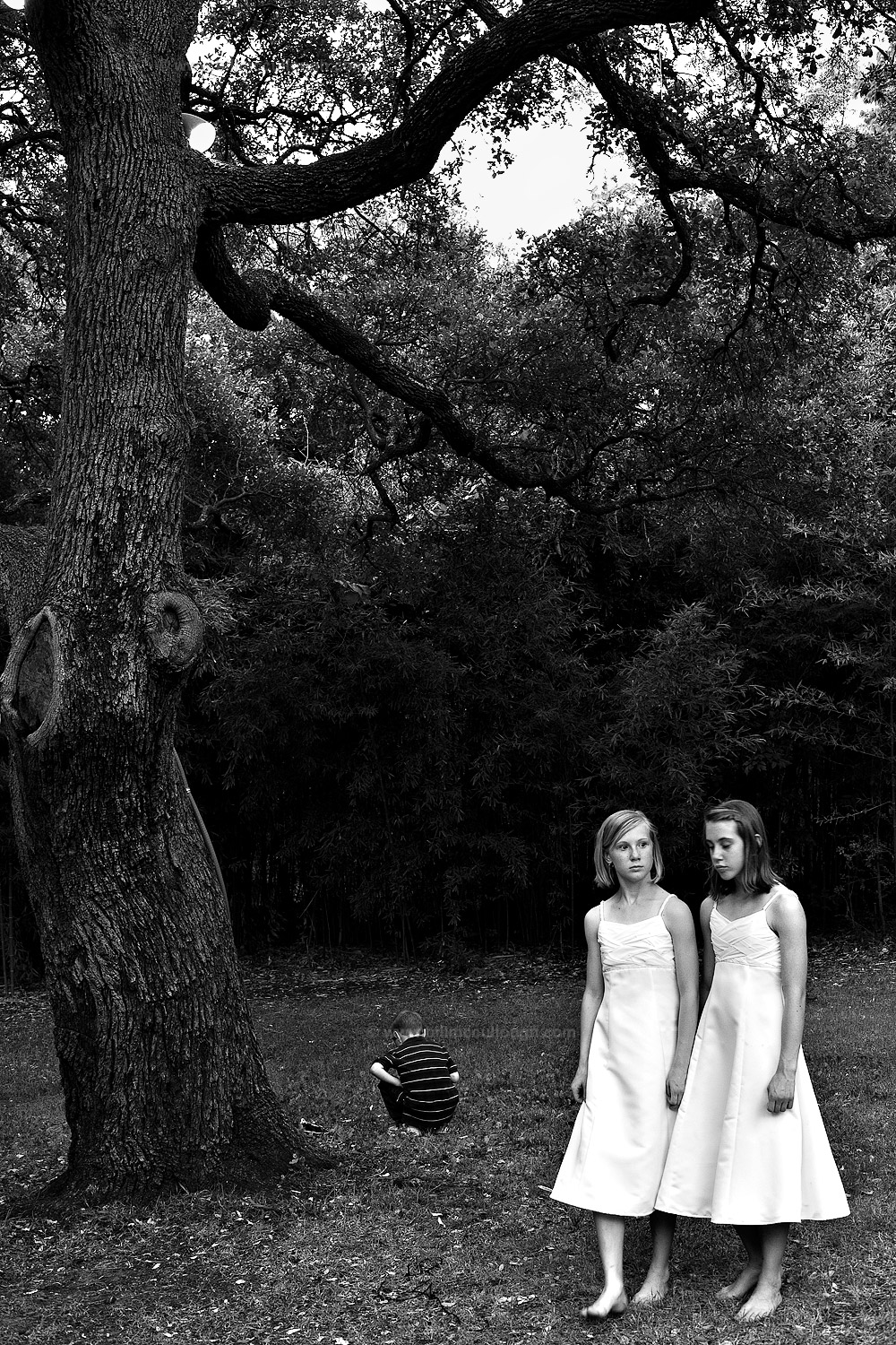 Girls and Tree
