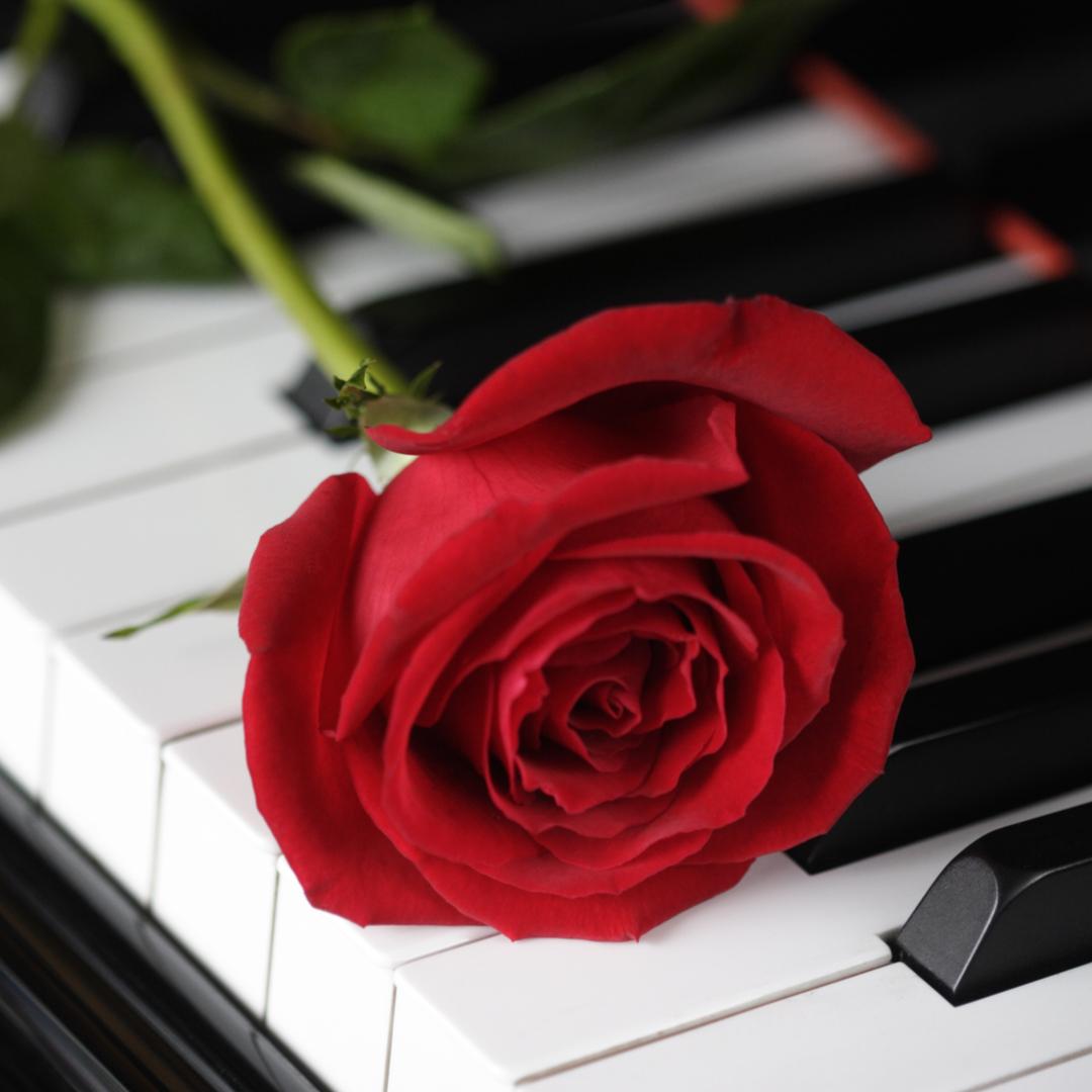 Forslag til sanger ved gravferd -