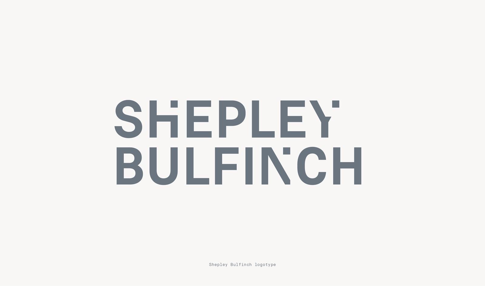 shepley2a.jpg