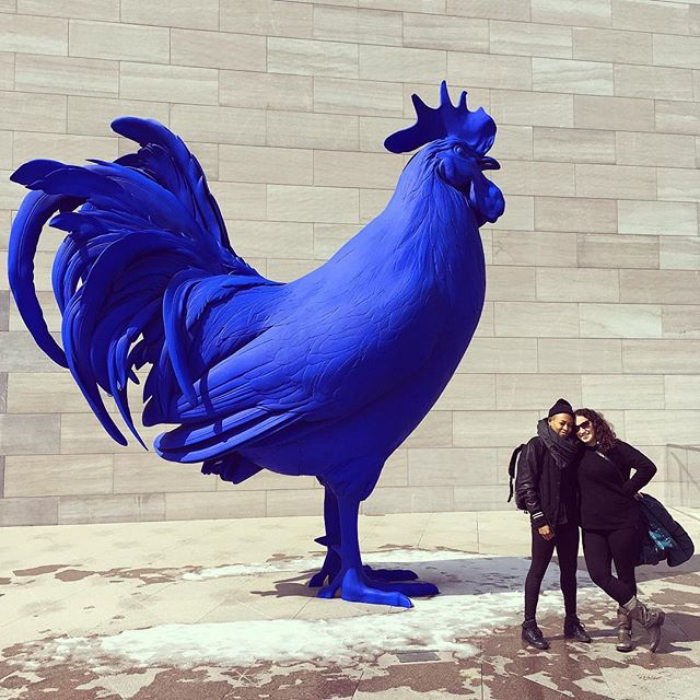 Dahlia & Joy III: Cock. #dclivingcolor