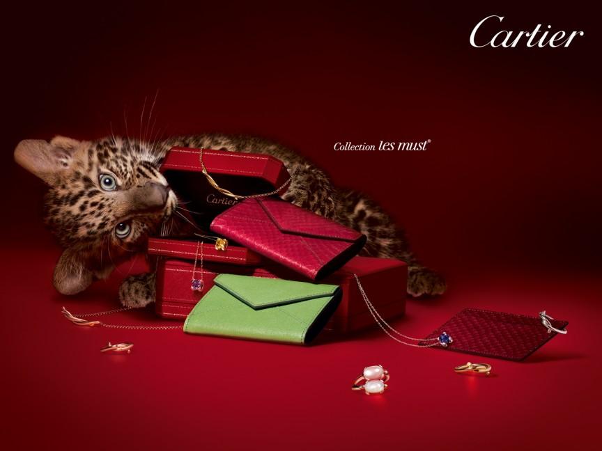No.3 CARTIER Est Brand Value- $13.9Billion