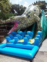 Gator Slide