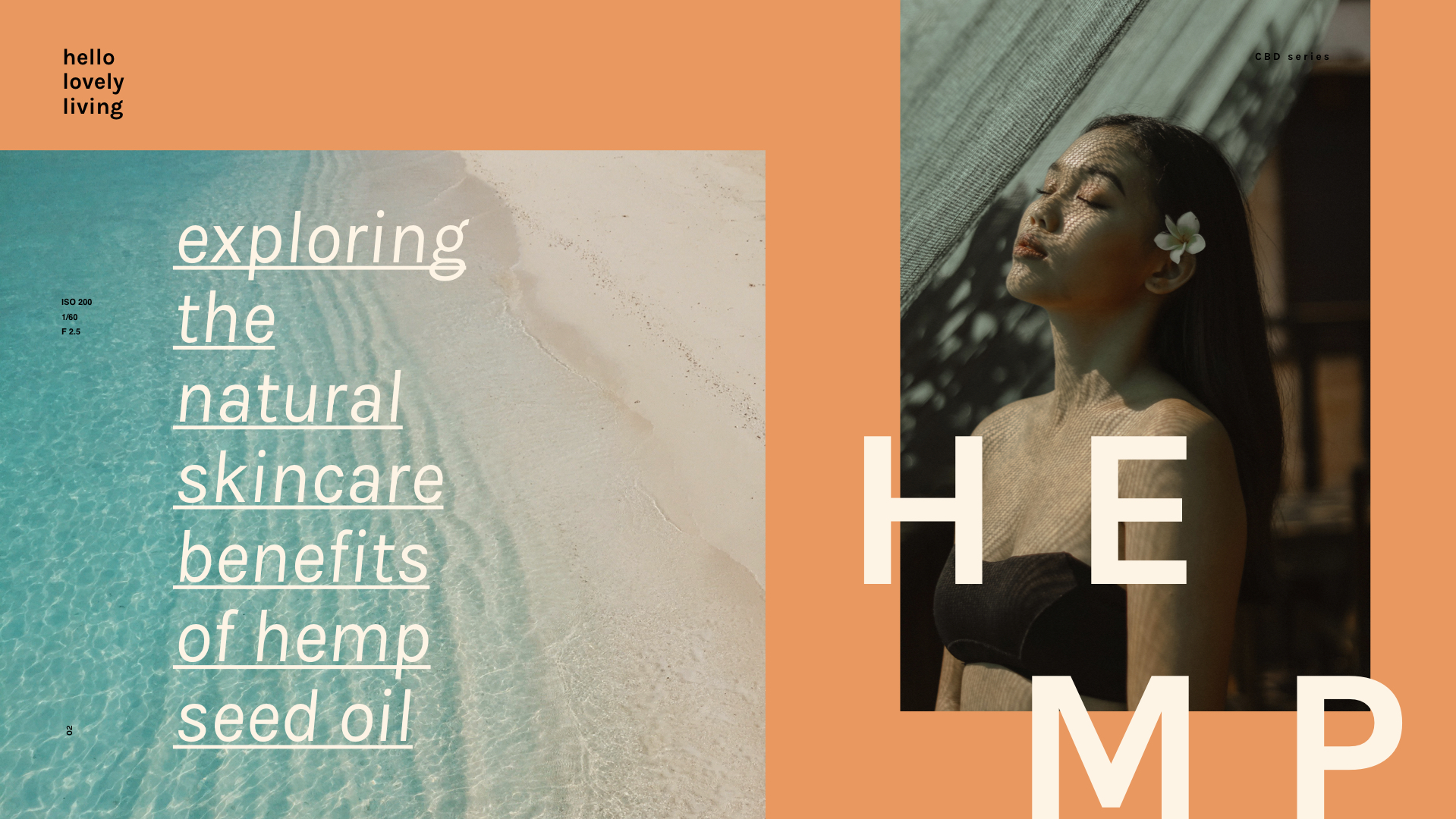 hellolovelyliving.com | CBD Series Part 2 | Exploring The Natural Skincare Benefits Of Hemp Seed Oil